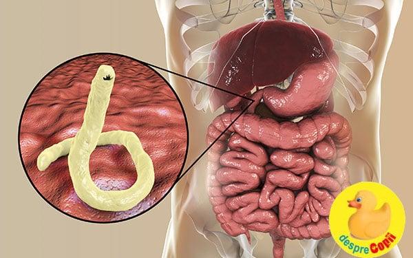 simptome ale infectiei cu paraziti intestinali