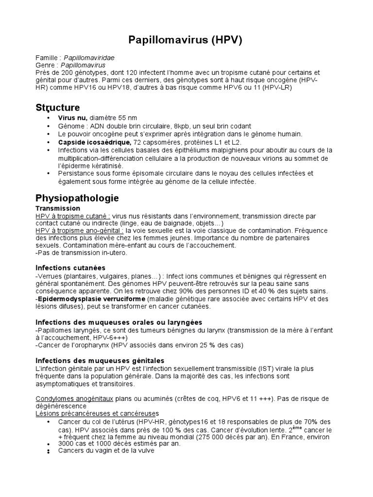 papillomavirus transmission a lhomme)
