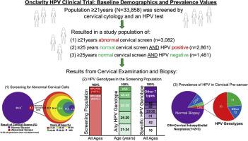 human papillomavirus n)