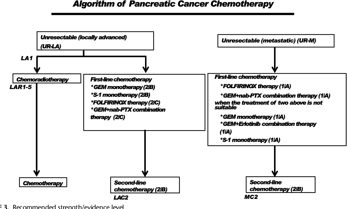 cancer pancreas guidelines