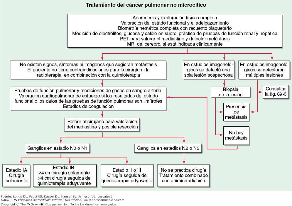 cancer pulmonar harrison)