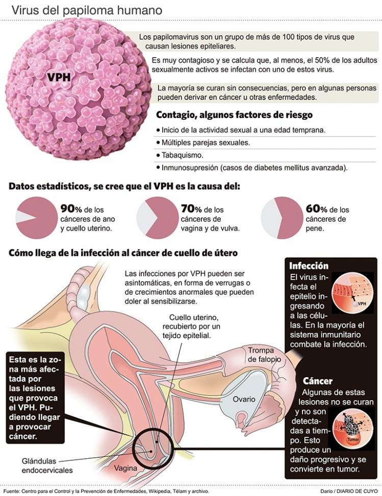 papilloma virus que es)