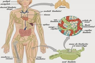 cancer maduva osoasa tratament)