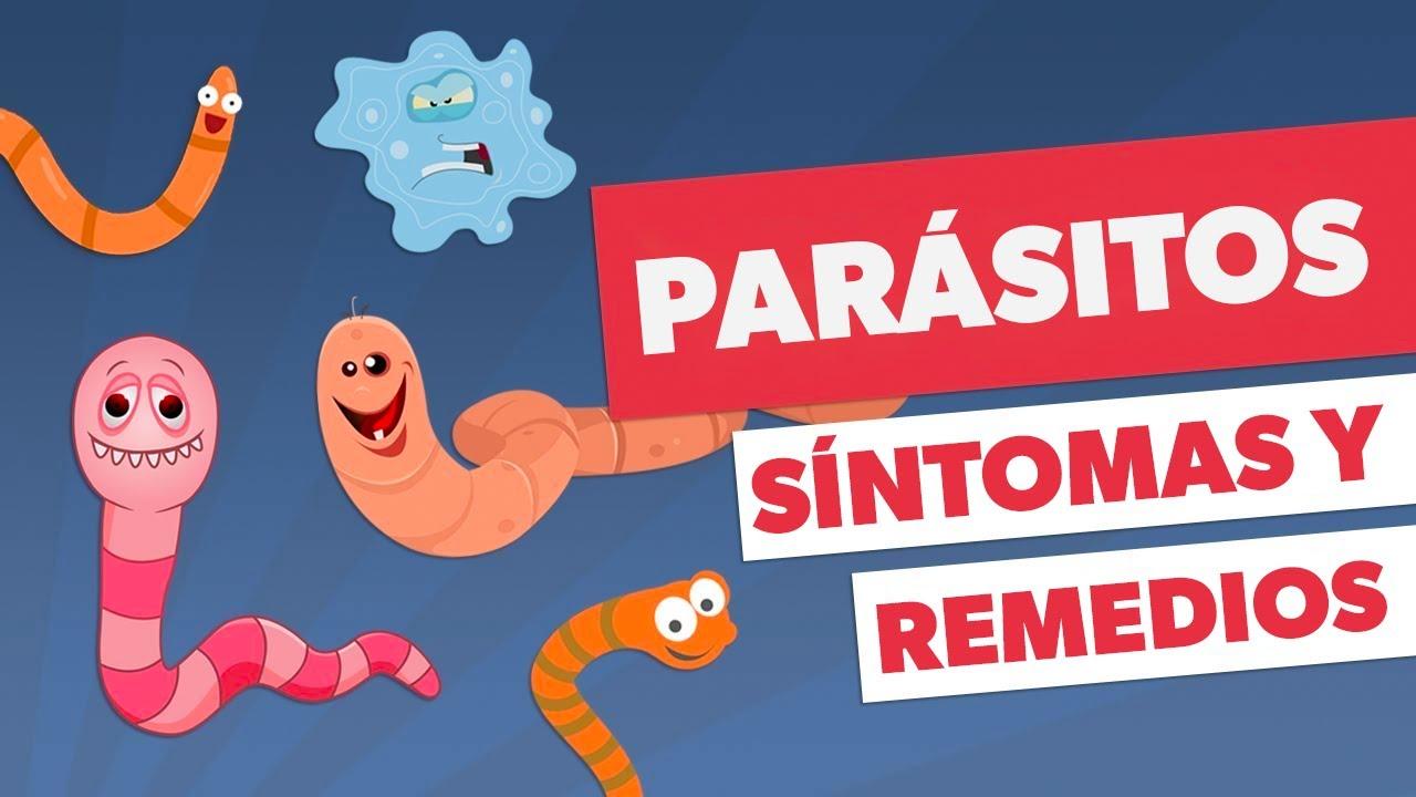 Darm-ParasitenDientamoeba fragilis, die Infektion.