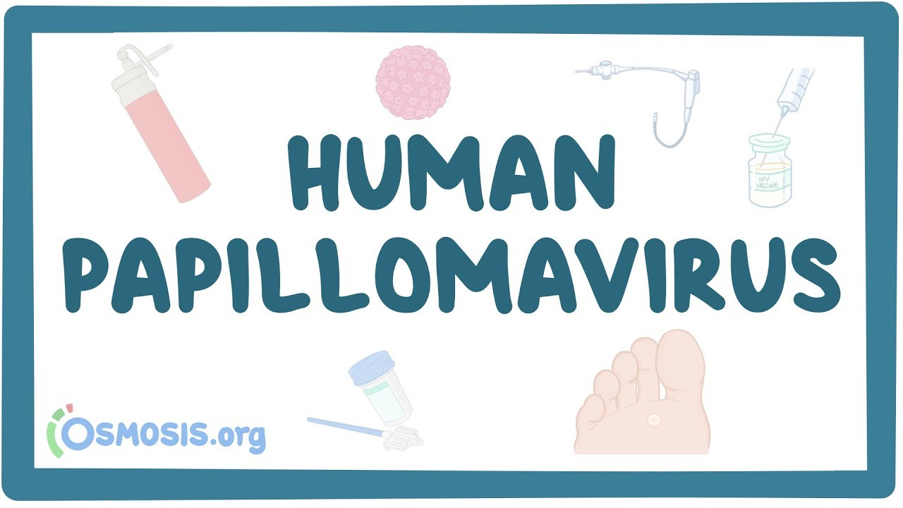ano ang human papilloma virus)
