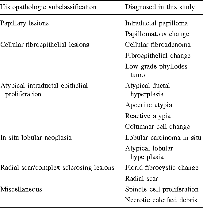 el papiloma fibroepitelial