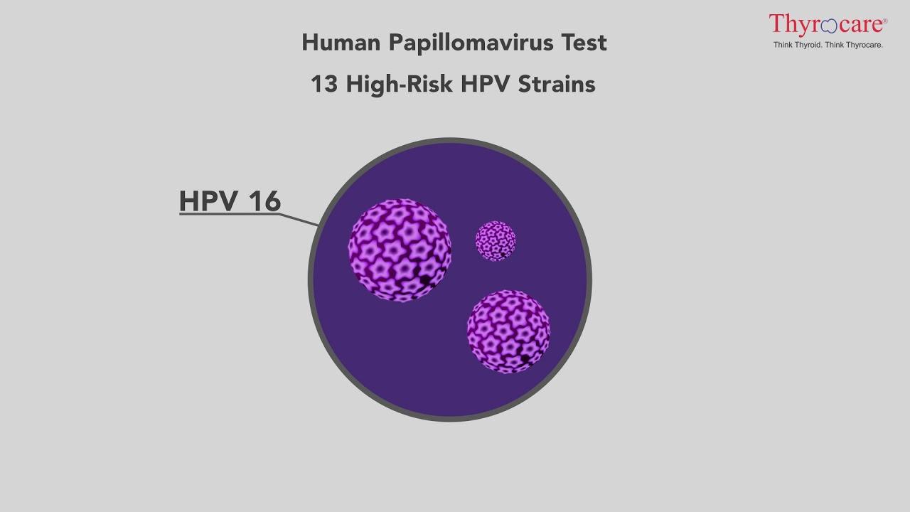 papillomavirus test)