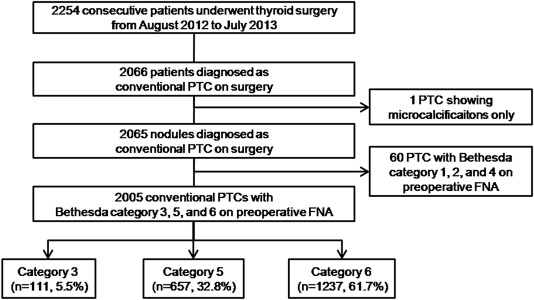 papillary thyroid carcinoma category vi