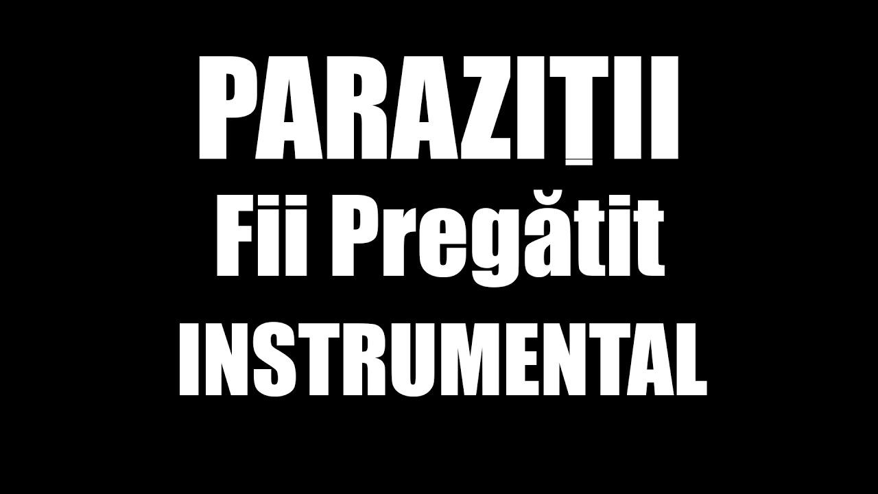 parazitii MP3 скачать бесплатно, слушать музыку parazitii - 66 песен/песни онлайн