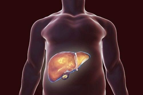 detoxifierea ficatului in mod natural