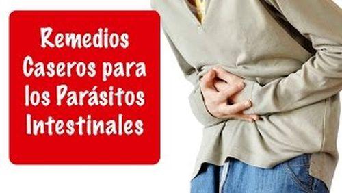 tratamiento para parasitos oxiuros)