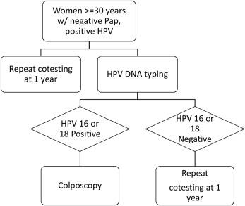 hpv high risk colposcopy)
