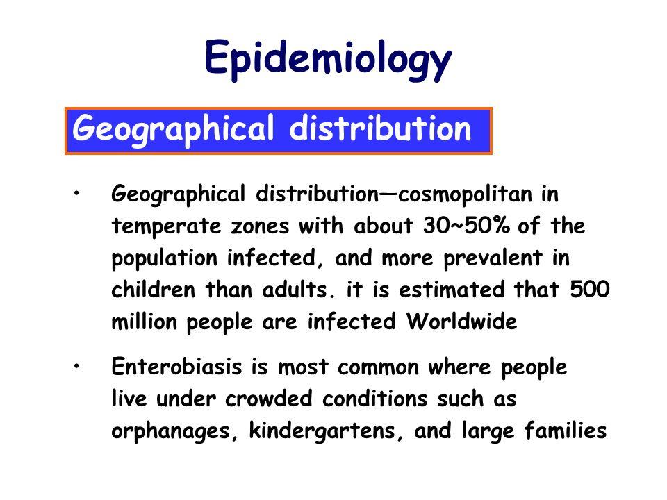 enterobius vermicularis epidemiology)
