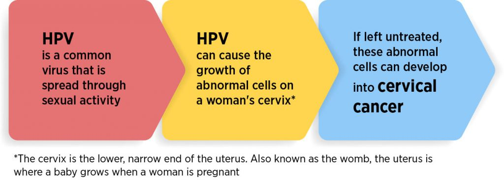 hpv and how it causes cervical cancer)