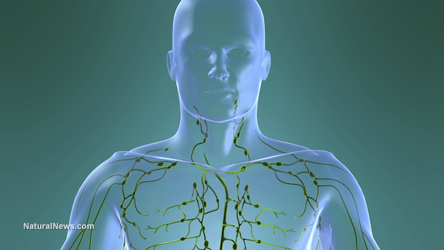 cancer limfatic simptome cauze)