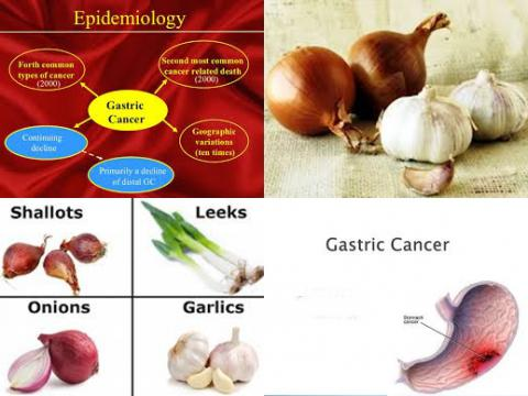 gastric cancer food
