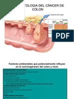 cancer intestinal fisiopatologia