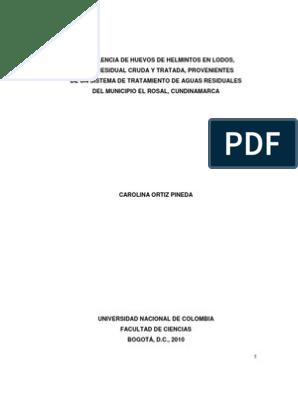 human papillomavirus infection mice papiloma virus humano tratamiento
