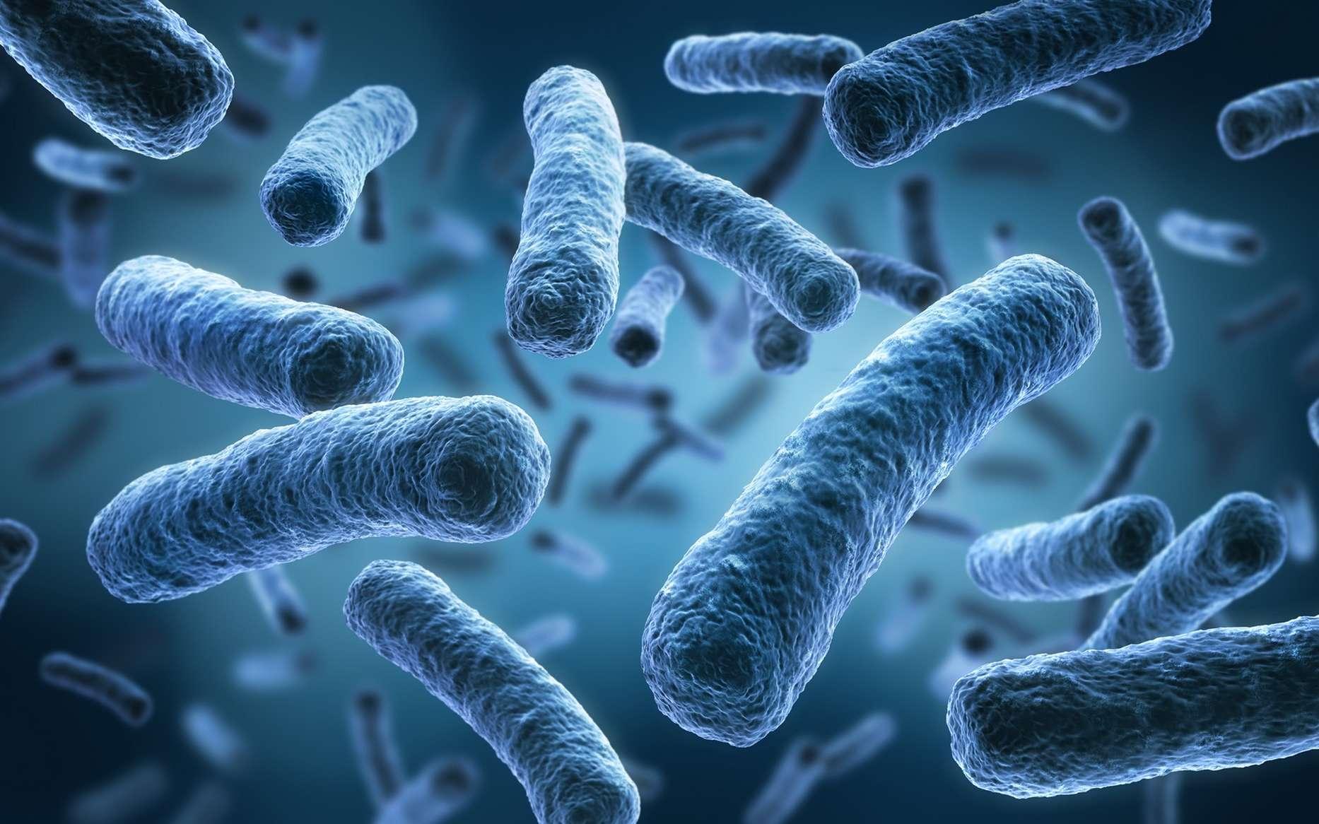 bacterie 7 lettres detoxifierea limfei simptome