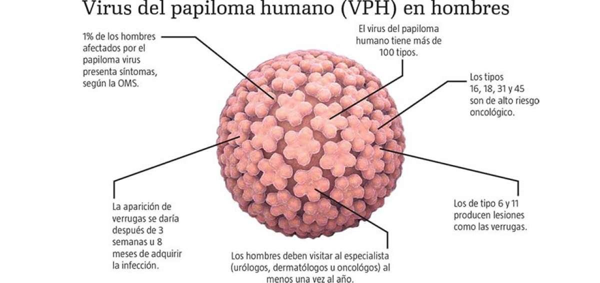 virus del papiloma tipo 6 y 11)