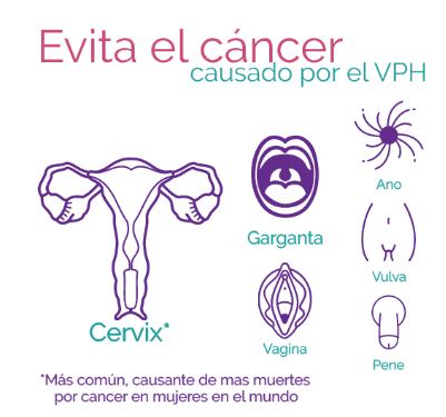 tipos de virus del papiloma humano que causan cancer aggressive cancer weeks to live