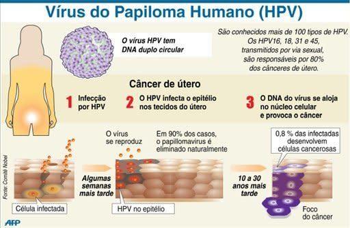 hpv e cancer de colo do utero