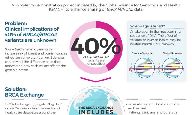 genetic cancer brca