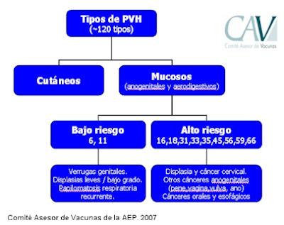 virus de papiloma humano generalidades