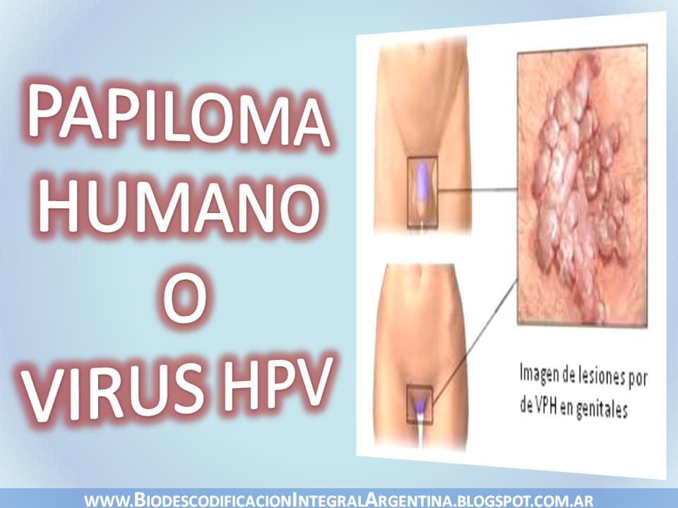 papiloma humano significado testicular cancer jaundice
