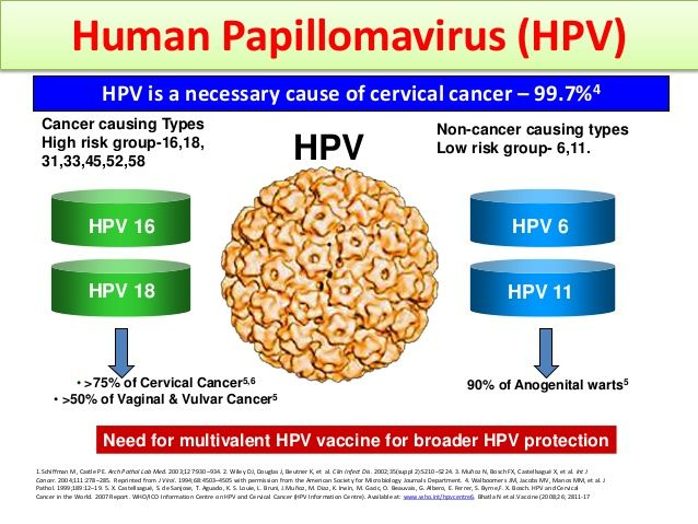 hpv high risk other than 16/18)