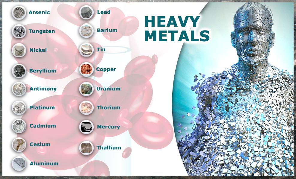 Metalele grele, un pericol pentru organism