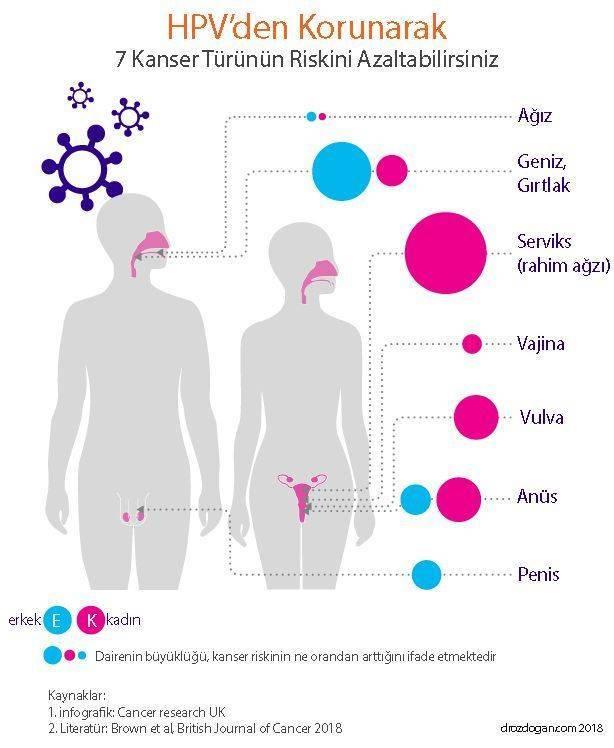 cancer endometrial tratamiento