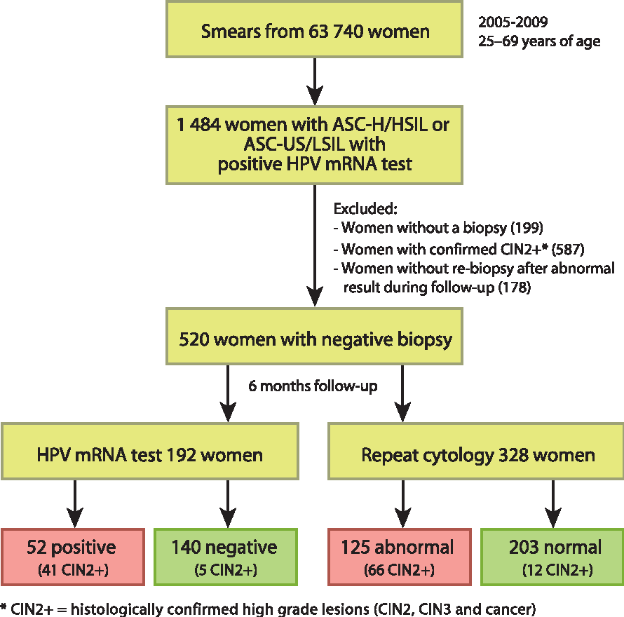 Human Papillomavirus (HPV) - ARNm E6/E7 | Bioclinica
