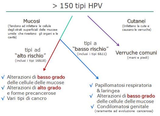 hpv ad alto rischio 16 18)