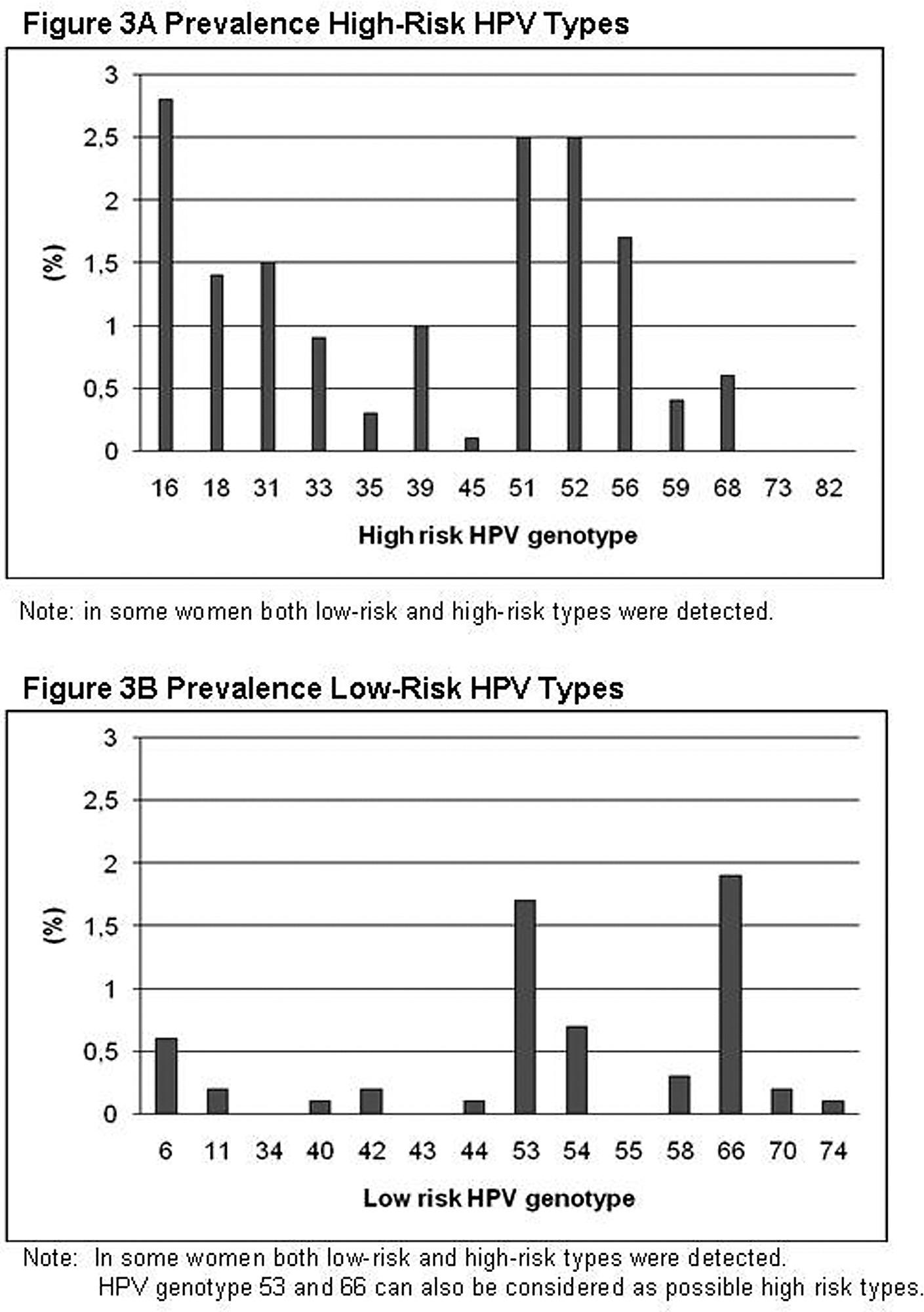 hpv high risk typ 16