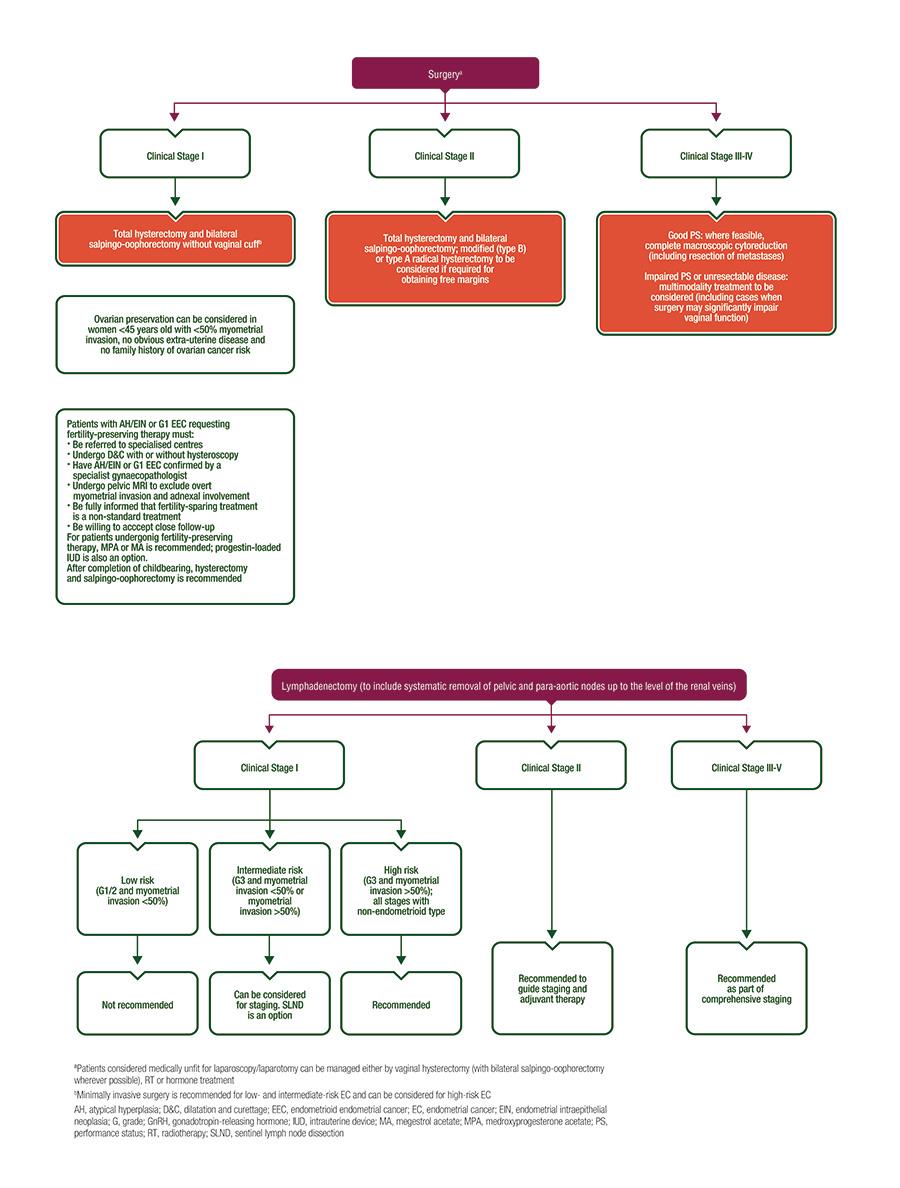 Ghiduri pentru pacienti | Regina Maria