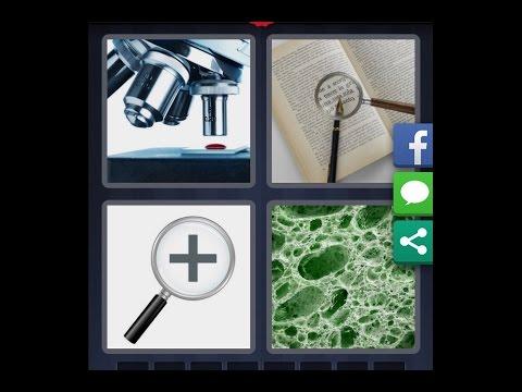 bacterie 4 images 1 mot