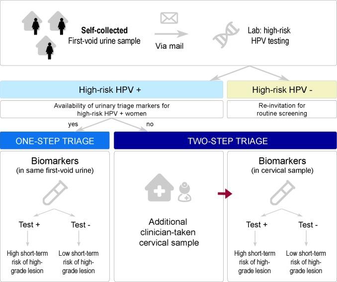 hpv virus urine test)