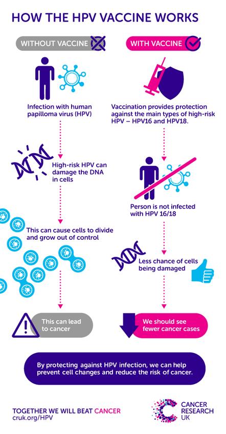 hpv cancer probability cancer col uterin recidivat