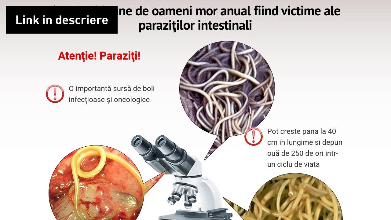 curățare intestinal paraziților