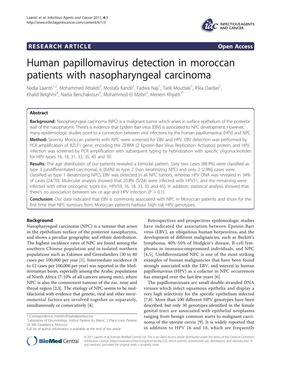 papillomavirus agent pathogene