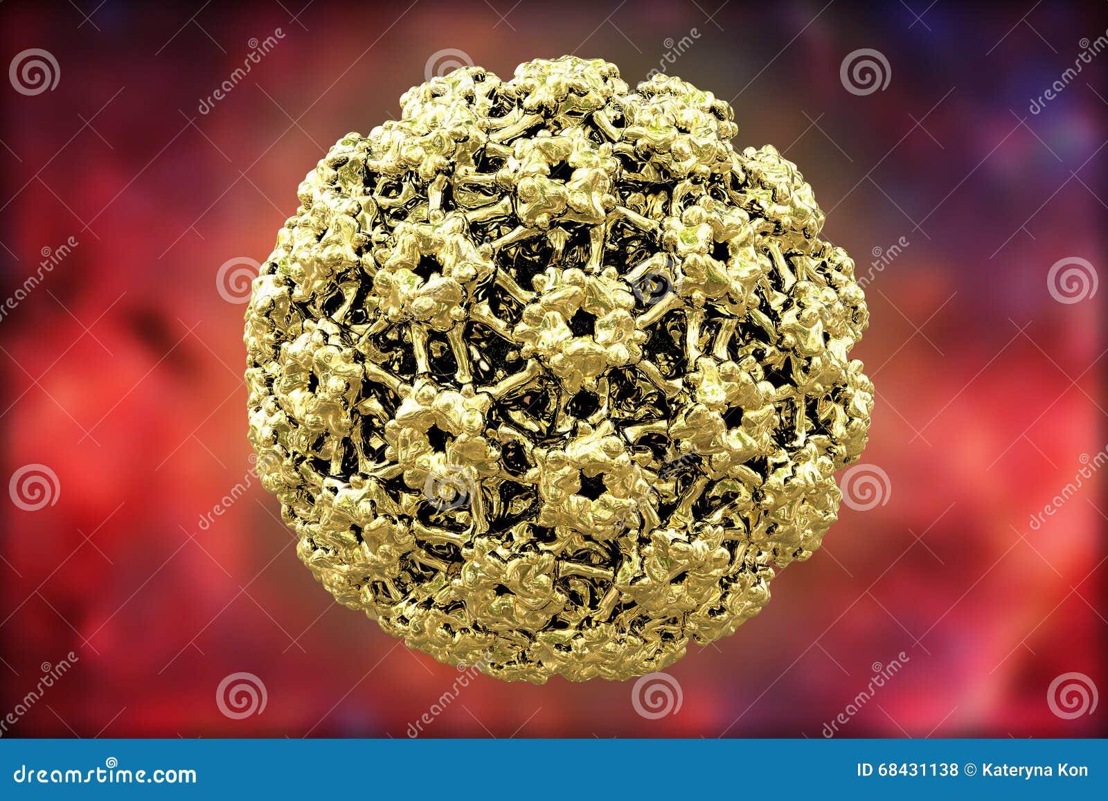 vaccin papilloma virus avis