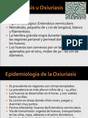 enterobius vermicularis gpc
