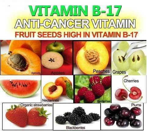 cancerul invins povestea vitaminei b17