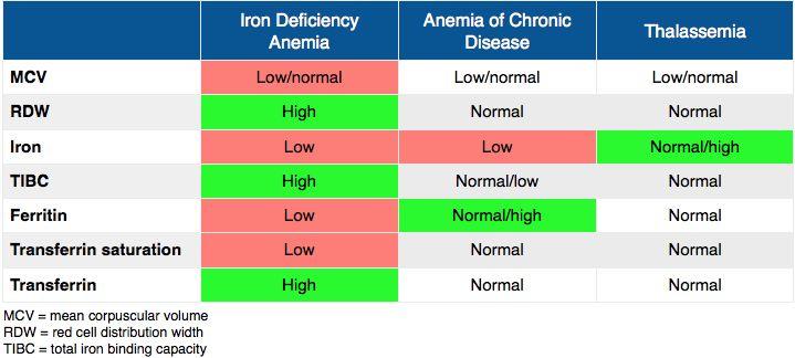 an iron deficiency anemia - Traducere în română - exemple în engleză | Reverso Context