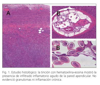 helmintox 250 mg posologie papillomavirus warze