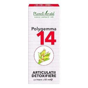 Polygemma 11 - Ficat detoxifiere - Plantextrakt | Sanavita