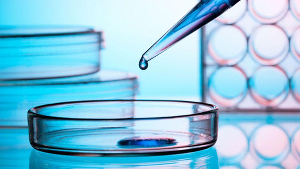 cancer renal imunoterapia virus de papiloma humano verrugas en genitales