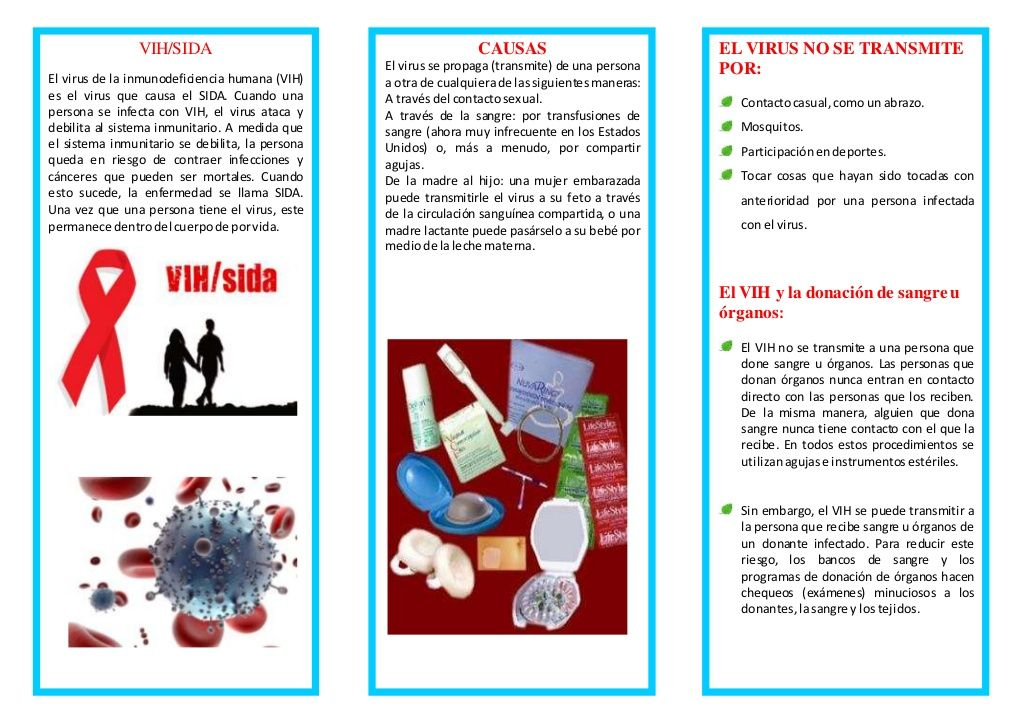 virus papiloma humano donar sangre