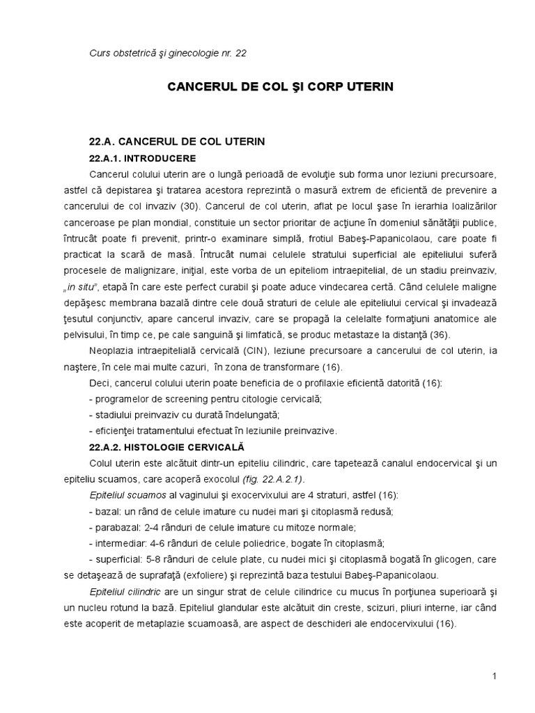 Prof. Dr. Neagoe Ioana